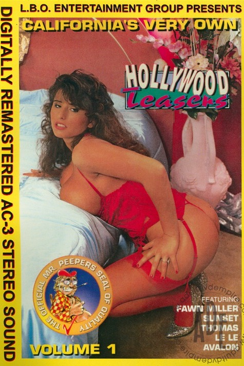 Hollywood Teasers 1-classic-porn-film-year-1992_pornstarclassics.com